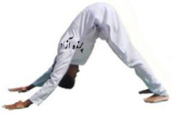 بسم الله الرحمن الرحیم+یوگا استان البرز+کانون تخصصی یوگا پرنده آزاد کرج+سیمین صدیق ابراهیم نیا+یوگا+سلام بر خورشید +سوریاناماسکارا+ فوائد سلام برخورشید+yoga+ SURYA NAMASKAR+ +Surya Namaskar or Sun Salutation Pose+تمرینات وینیاسافلو+vinyasaflowyoga+breath+فعال شدن چاکراها+ تقویت هاله نورانی+افزایش سطح انرژی+فعال سازی سیستم سمپاتیک و پاراسمپاتیک+افزایش فاکتورهای آمادگی جسمانی در بدن+سیستم ورزشی هوازی+هیپوتالاموس++غده پینه آل یا صنوبری+ باشگاه علمی تخصصی یوگا پرنده آزاد کرج+